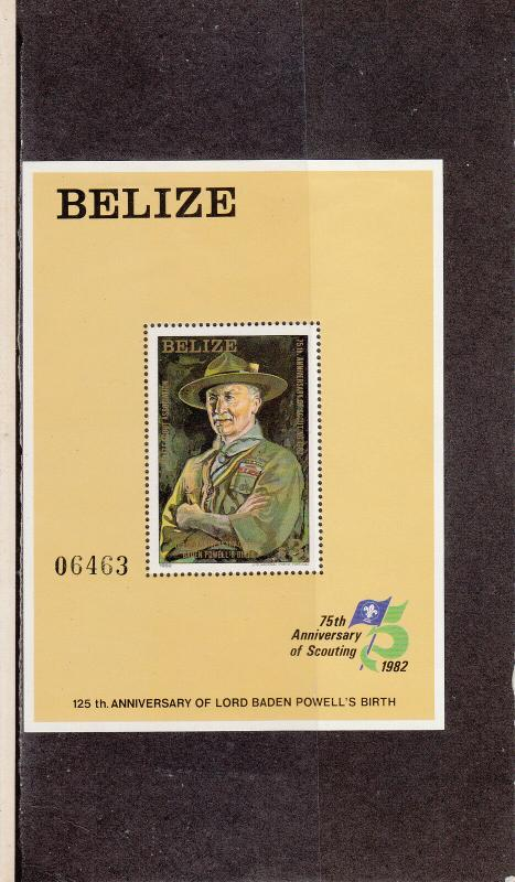 BELIZE 645 SOUVENIR SHEET MINT 2014 SCOTT CATALOGUE VALUE $27.50