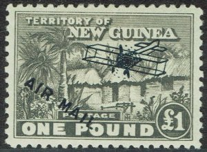 NEW GUINEA 1931 HUT AIRMAIL 1 POUND