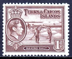 Turks and Caicos Islands - Scott #80 - MH - SCV $0.45