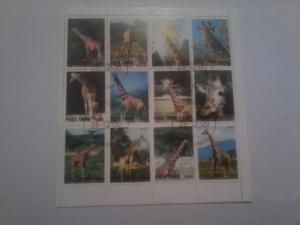 TIMOR SHEET USED GIRAFFES WILDLIFE