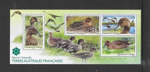 BIRDS - FRENCH SOUTHERN ANTAARCTIC TERRITORY #479  DUCKS  MNH