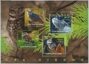 865 - CENTRAL AFRICAN - ERROR - MISSPERF Stamp sheet  2014  Owls BIRDS