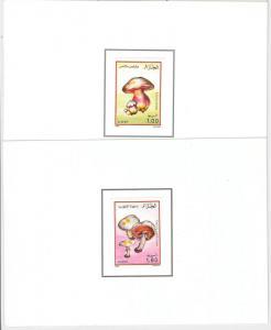 ALGERIA - 4 LUXURY Souvenir Sheets - Scott # 908/911   1989 - MUSHROOMS Funghi