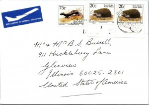 South Africa > Glenview IL USA hedgehog and striped weasel stamps air mail