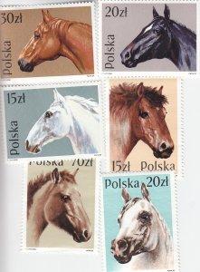 Poland: Sc #2894-2899, Horses, MNH (S18985)