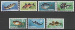 ALBANIA SG1091/7 1967 FISHES MNH