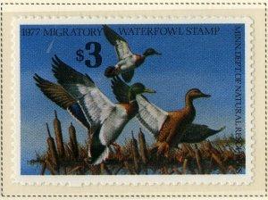 US MN1 MINN STATE DUCK STAMP 1977 MNH SCV $18.00 BIN $9.00