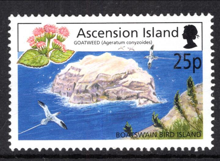 Ascension 805 MNH VF