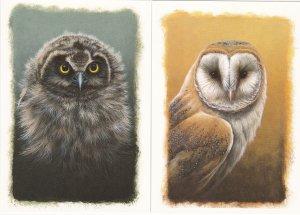 Isle of Man # 727-732, Owls, Maxi Cards, Unused