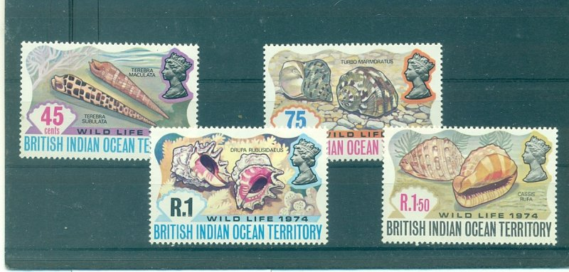 B.I.O.T. - Sc# 59-62. 1974 Sea Shells. MNH. $11.50.