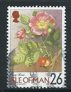 Isle of Man  Used   SG 782