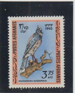 Afghanistan  Scott#  708  MNH  (1965 Black-Throated Jay)