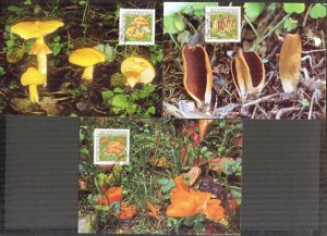 Liechtenstein 1997 Mushrooms 3 Maxi Cards FDC