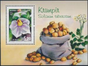 Bosnia Herzegovina Croatian post Mostar stamp Crops block 2008 MNH WS213879