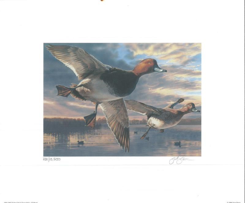 RW71 2004 FEDERAL DUCK STAMP PRINT REDHEAD by Scot Storm