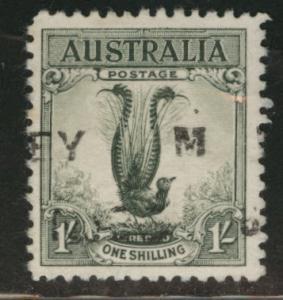 AUSTRALIA Scott 141 used 1932 Male Lyrebird CV$4