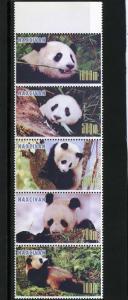 Naxcivan Republic 1997 PANDAS Strip (5) Perforated Mint (NH)