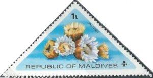 Maldive Islands 557 (mnh) flowers: Phyllangia (1975)