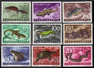 1962 Yugoslavia 1007-1015 Reptiles 25,00 €
