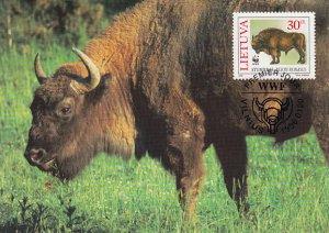 Lithuania 1996 Maxicard Sc #529 30c European bison WWF