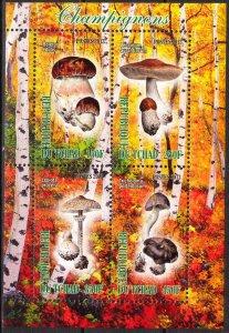 Chad 2013 Mushrooms (2) MNH Cinderella !