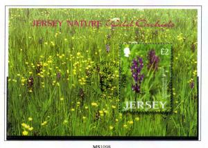 Jersey  Sc 1084 2003 £2 Wild Orchids stamp sheet used
