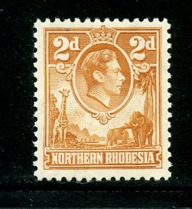 Northern rhodesia # 31, Mint Hinge. CV # 45.00
