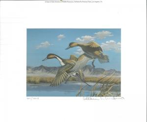 UTAH #2 1987 STATE DUCK STAMP PRINT PINTAILS by Arthur Anderson