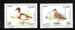 #8063 ALGERIA 1996 FAUNA,BIRDS YV 1103-4 MNH