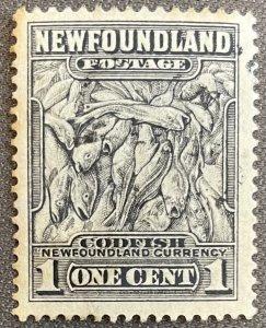 Newfoundland # 253 Used