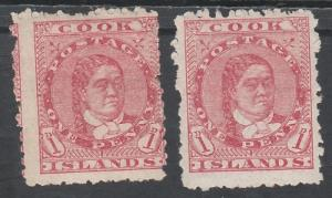 COOK ISLANDS 1901 QUEEN 1D BOTH PAPERS NO WMK