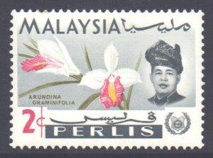 Malaya Perlis Scott 41 - SG42, 1965 Orchids 2c MH*