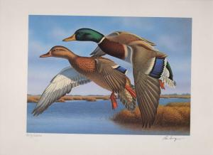 FLORIDA #9 1987 STATE DUCK STAMP PRINT MALLARDS by  Ronald Louque