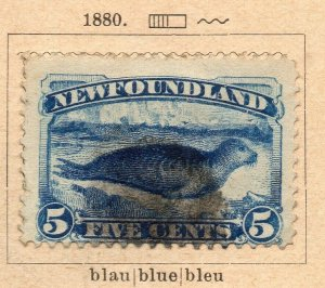 Newfoundland 1880 Early Issue Fine Used 5c. NW-11918