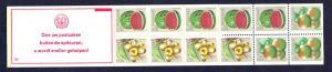 Surinam 1980  MNH Booklet  6c watermelon right