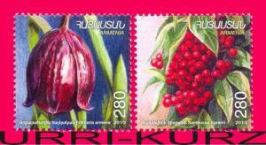 ARMENIA 2010-2011 Nature Flora Plants Flowers Fruits Berries 2v Mi 741-742 MNH