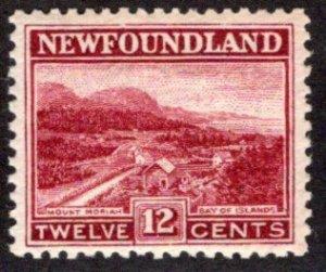 133, NSSC, Newfoundland, 12c lake, MNHOG, F/VF, Mount Moriah, Scott 141