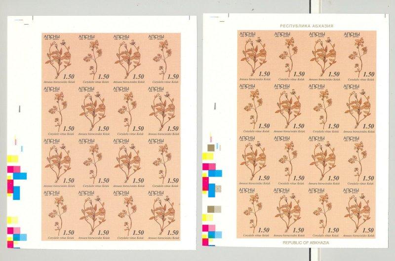 Abkhazia (Georgia) 1998 Medicinal Plants 1v M/S of 16 x 5v Progressive Proofs