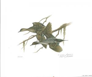 FLORIDA #2 1980 STATE DUCK STAMP PRINT PINTAILS  by Ernest Simmons