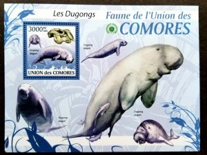 *FREE SHIP Comoros Dugongs 2009 Marine Life Fauna (ms) MNH