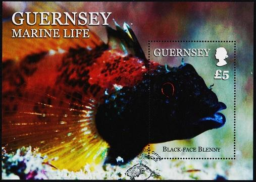 Guernsey. 2016? £5 Miniature Sheet. Fine Used
