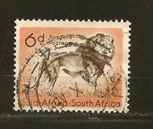 South Africa 207 Lion Used