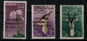 Somalia Scott 242,C68-9 Mint hinged (Catalog Value $88.00)