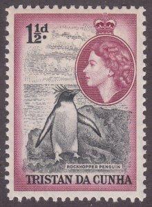 Tristan Da Cunha 16 Rockhopper Penguin 1954