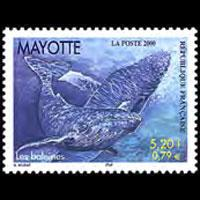 MAYOTTE 2000 - Scott# 134 Whales Set of 1 NH