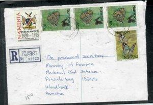 NAMIBIA COVER (P3006B) 1995 BUTTERFLY 50CX3+$2.50 REG OTJIWA-RONGO INTERNAL
