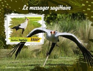 TOGO - 2019 - Birds : Secretarybird - Perf Souv Sheet - M N H