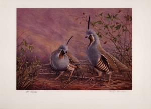IDAHO #9 1995 STATE UPLAND GAME STAMP PRINT MOUNTAIN QUAIL By Evelyn Fournier