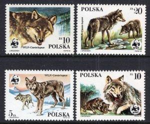 Poland 2678-2681 Wolves MNH VF