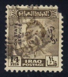 Iraq **U-Pick** Spacefiller Box #S26-05   variety world stamps
